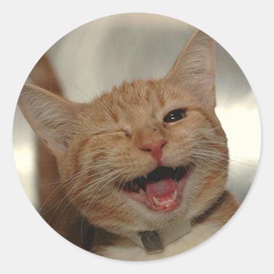 """Résultat de recherche d'images pour """"chat heureux"""""""
