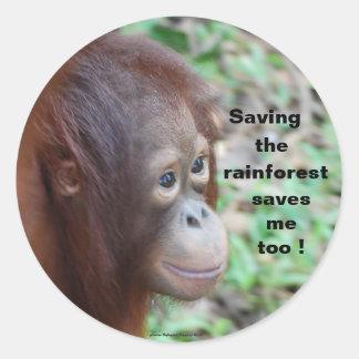 Sticker Rond Conservation de faune : Orangs-outans et forêt