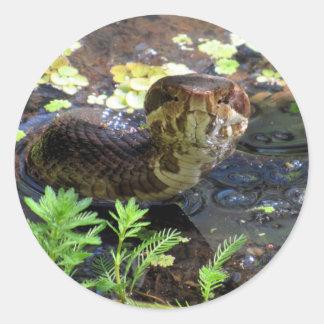 Sticker Rond Cottonmouth/autocollants de mocassin/serpent d'eau