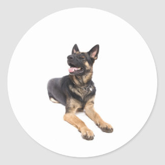Sticker Rond dog - german shepherd