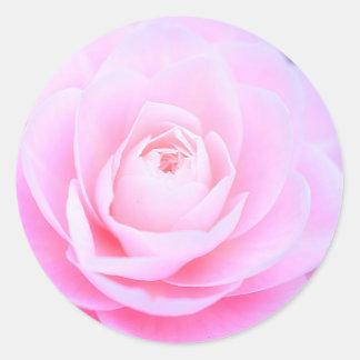 Sticker Rond Douceur rose