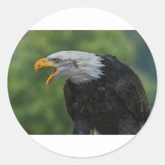 Sticker Rond Eagle noir blanc pendant la journée