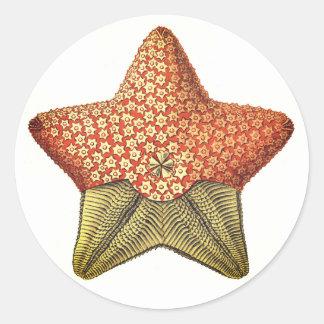 Sticker Rond Étoiles de mer