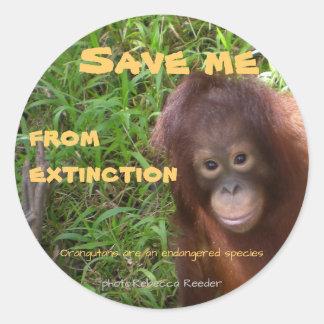 Sticker Rond Faune d'orang-outan d'espèce menacée