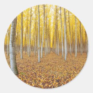 Sticker Rond Ferme d'arbre de peuplier dans Boardman Orégon