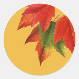 Sticker Rond Feuille d'automne lumineux