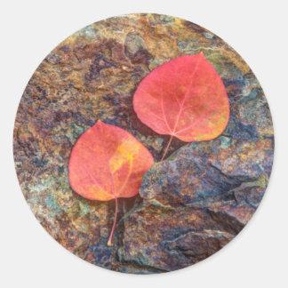 Sticker Rond Feuille d'automne sur la roche, la Californie