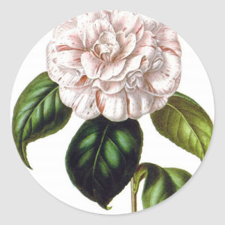 Sticker Rond Fleur de Camille
