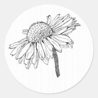 Sticker Rond fleur du soleil