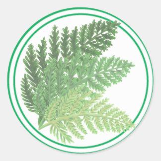 Sticker Rond Fougères de vert de mousse