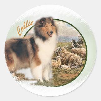 Sticker Rond Gardien rugueux de colley des moutons