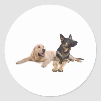 Sticker Rond german shepherd and golden retriever