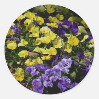 Sticker Rond Hillside des pensées pourpres et jaunes