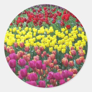 Sticker Rond Jardin de tulipe floral