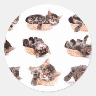 Sticker Rond kittens in a basket
