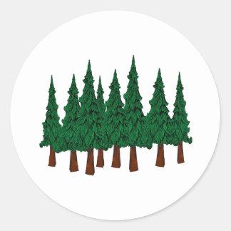 Sticker Rond La forêt à feuillage persistant