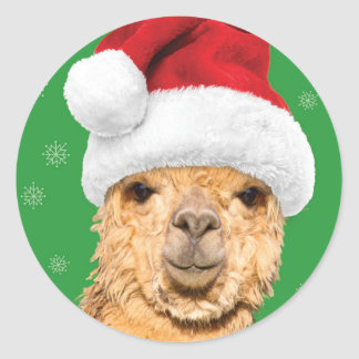 Sticker Rond Lama de Noël de Navidad d'ouatine avec le