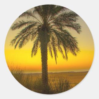 Sticker Rond Lever de soleil de palmier
