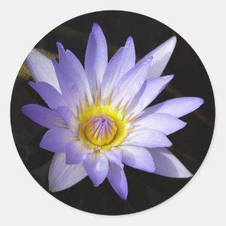 Sticker Rond lotus bleu du Nil