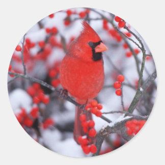 Sticker Rond Mâle cardinal du nord, hiver, IL