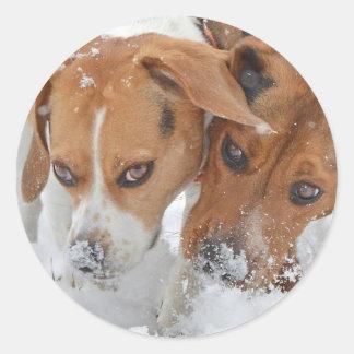 Sticker Rond Milou flaire des beagles