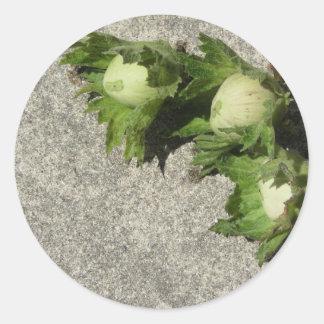 Sticker Rond Noisettes vertes fraîches sur le plancher