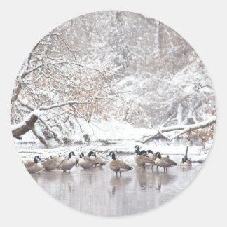 Sticker Rond Oies dans la neige
