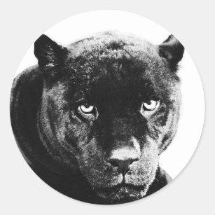 Sticker Rond Panthère noire Jaguar
