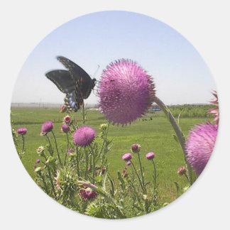 Sticker Rond Papillon grand de prairie d'herbe sur le chardon