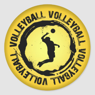 Sticker Rond Phoque intéressant de volleyball (mâle)