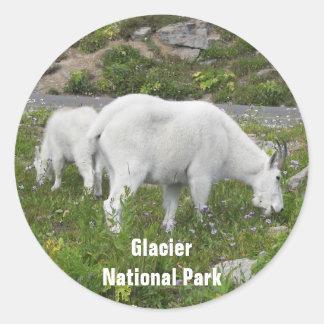 Sticker Rond Photo de chèvres de montagne de parc national de