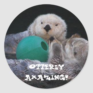 Sticker Rond Photo extraordinaire de loutres de mer d'Otterly