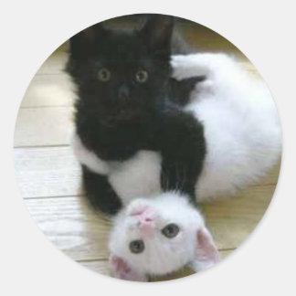 Sticker Rond PIC mignonne des chatons noirs et blancs