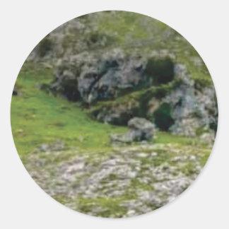 Sticker Rond pierre verte de merveille