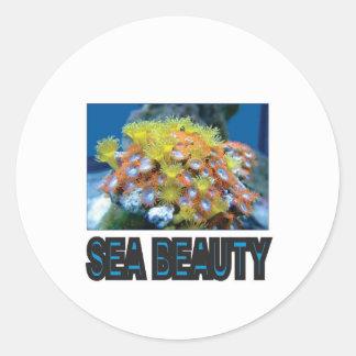 Sticker Rond pile de beauté de mer