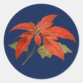 Sticker Rond Poinsettia, arrière - plan bleu-foncé - Joyeux