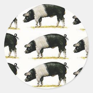 Sticker Rond porcs dans une rangée