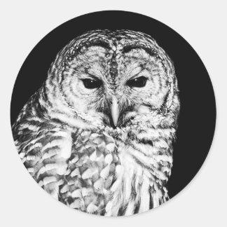 Sticker Rond Portrait noir et blanc de hibou barré