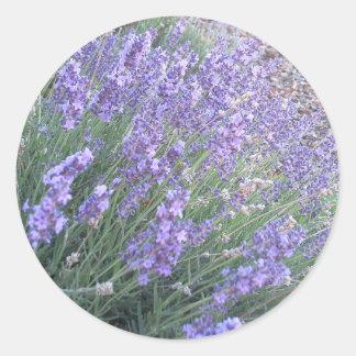 Sticker Rond Pourpre rond classique de l'autocollant   de fleur