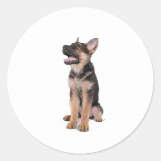 Sticker Rond puppy German shepherd