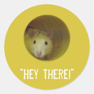 Sticker Rond Rat mignon chez l'animal drôle de trou