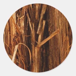 Sticker Rond Regard en bois d'écorce texturisé par cèdre