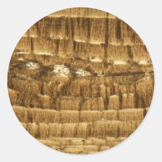 Sticker Rond Section mince de chaux de Nummulite sous la MICR