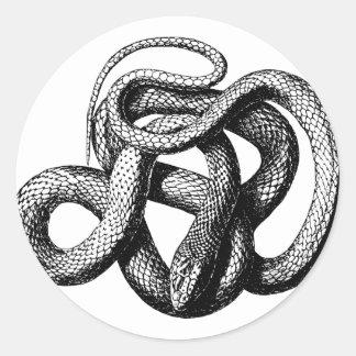 Sticker Rond Serpent tordu