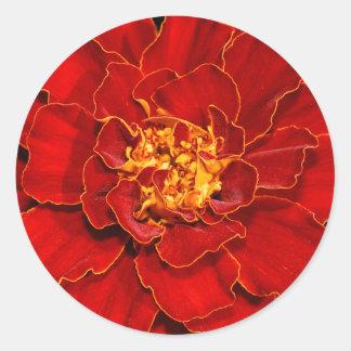 Sticker Rond Souci de rouge de Durango
