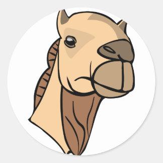 Sticker Rond Tête de chameau