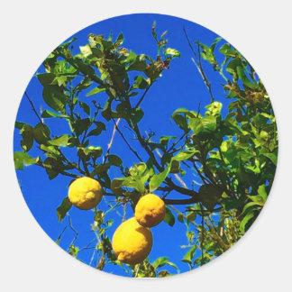 Sticker Rond Trois citrons siciliens