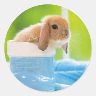Sticker Rond verts bleus de LAPIN de BÉBÉ de 20_baby_animals