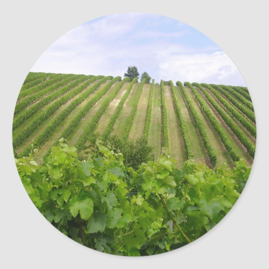 Sticker Rond Vineyard - Vignoble (Bordeaux - France) 02