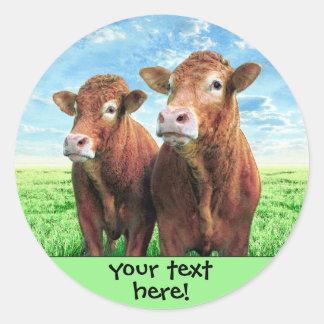Sticker Rond votre texte ici !